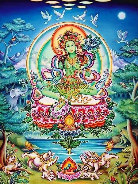 Tara Verde la Madre di tutti i Buddha