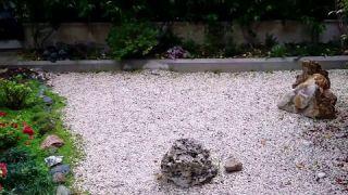 Il giardino giapponese di A.I.S.O. (Roma)